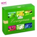 Coffret evergreen 60 Thés Verts Ahmad Tea