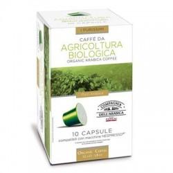 10 Capsules Bio Compatibles Nespresso® Corsini