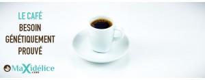 Le café : un besoin génétiquement prouvé